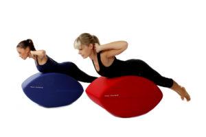 Fittness-Schnecke Training für Zuhause und Fitnessstudio