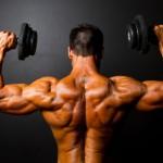 Wertvolle Prinzipien für das Training